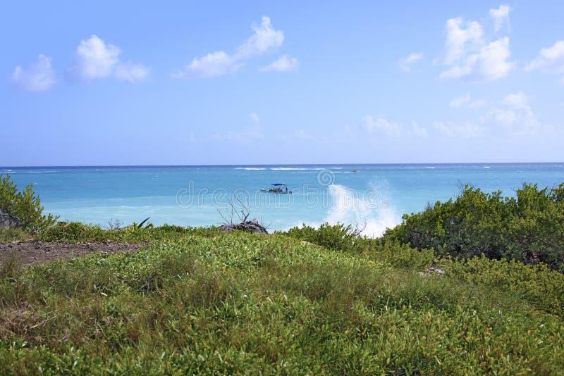 La mer des Caraïbes et la vague éclaboussent dans Tulum, péninsule du Yucatan, Mexique, premier plan d'herbes vertes photo libre de droits