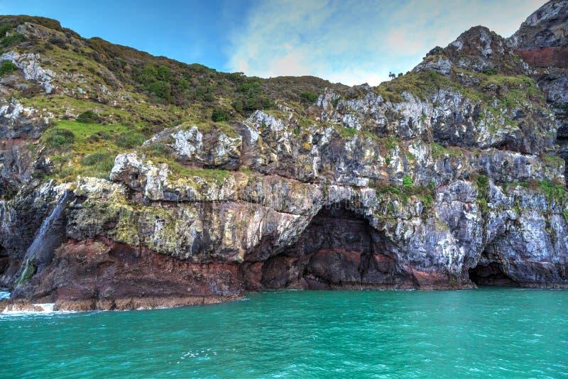 La mer foudroie à la réservation marine d'Akaroa, Nouvelle-Zélande photos libres de droits