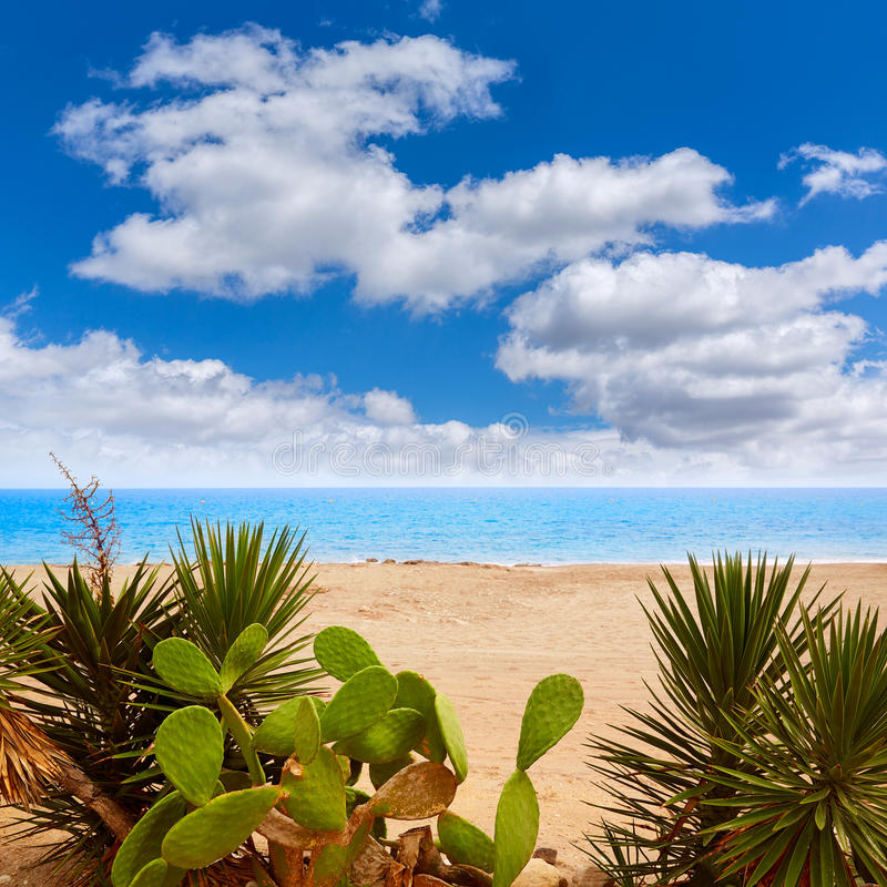 La mer Méditerranée Espagne de plage d'Almeria Mojacar image libre de droits