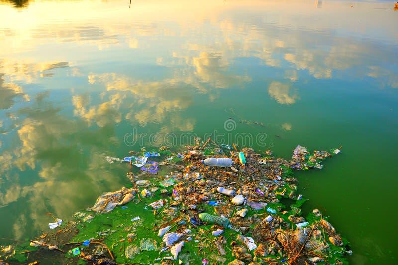La Mer Noire polluée et modifiée en Roumanie photographie stock