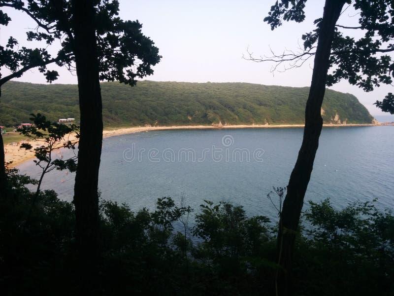 La mer par la forêt image stock