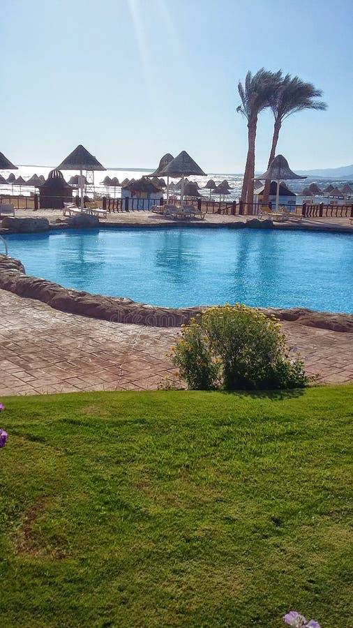 La Mer Rouge d'Egipt images stock