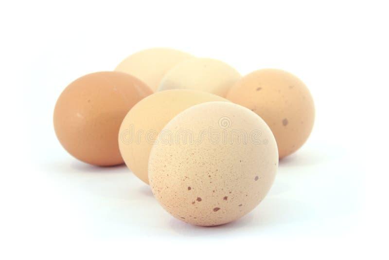 La mezza dozzina libera le uova di galline dell'intervallo immagine stock