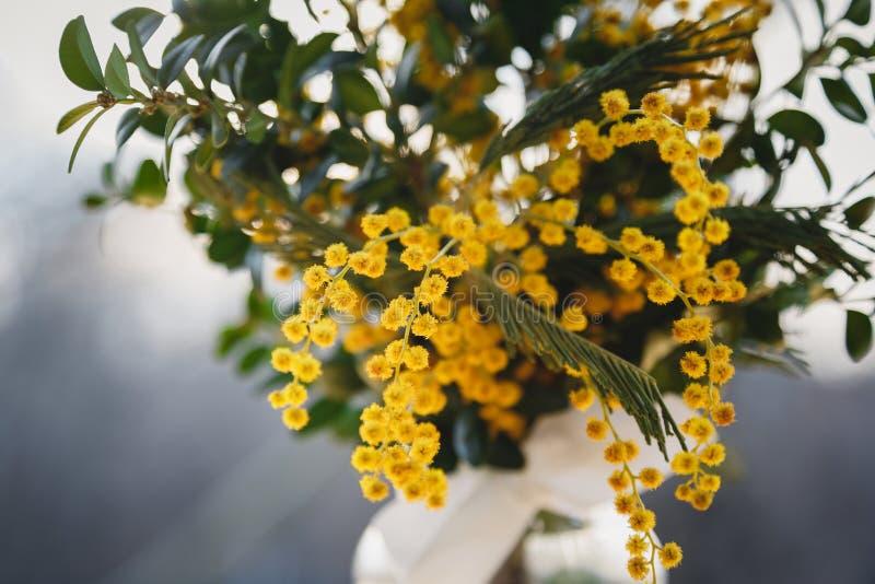 La mimosa amarilla fresca florece el ramo en luz de la tarde al aire libre Manojo de flores fotografía de archivo