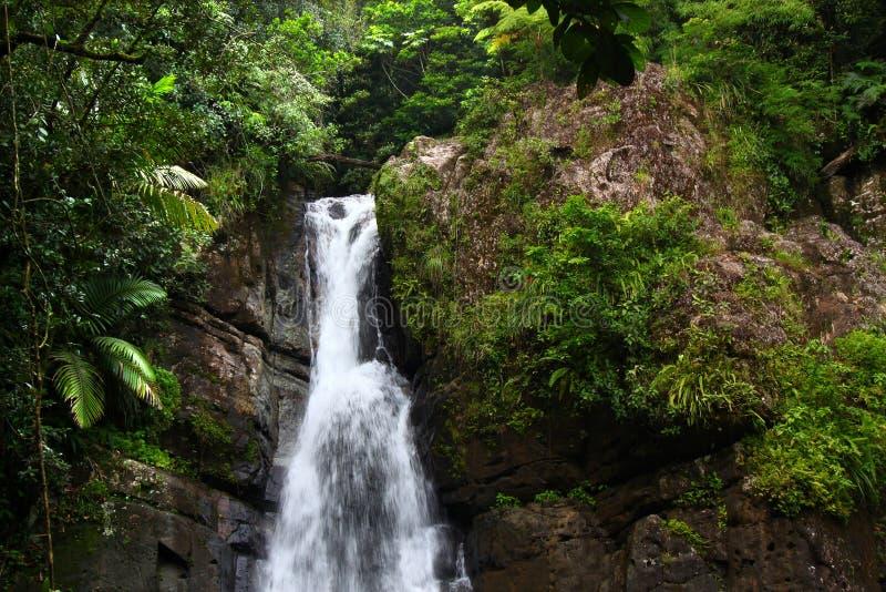La Mina Falls - Puerto Rico royalty free stock photo