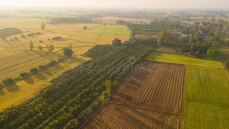 La mise en valeur de sol de champ en vue de l'ensemencement ou du plantin photographie stock