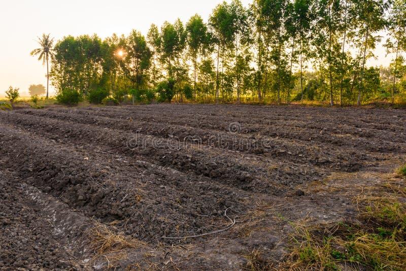 La mise en valeur de sol de champ en vue de l'ensemencement ou du plantin images stock