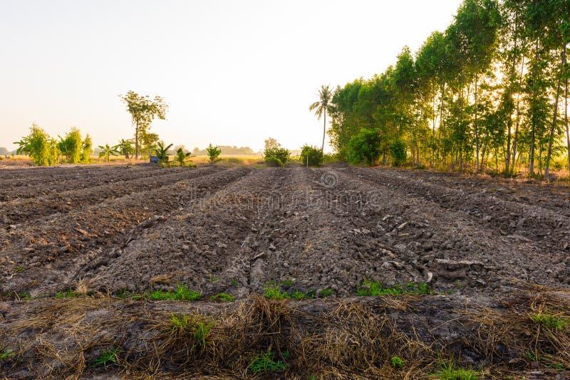 La mise en valeur de sol de champ en vue de l'ensemencement ou du plantin photographie stock libre de droits