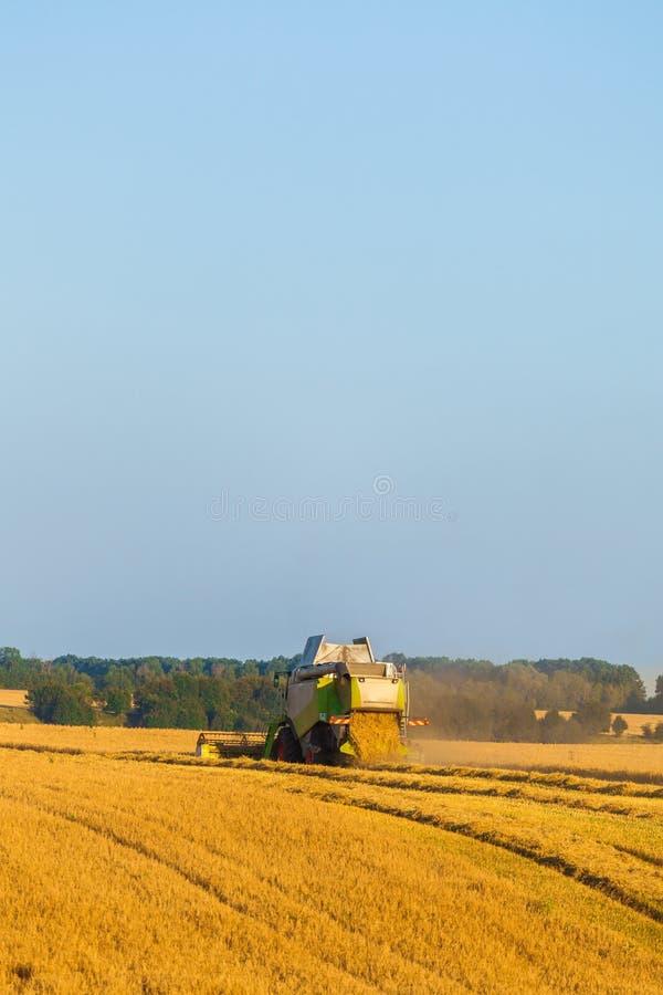 La moissonneuse fonctionnant dans le domaine et fauche le blé l'ukraine photo stock