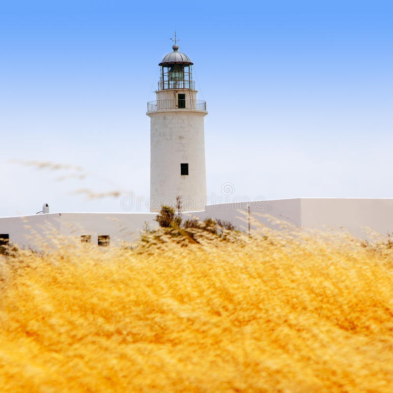 Download La Mola Lighthouse In Formentera With Golden Grass Stock Photo - Image: 25411152