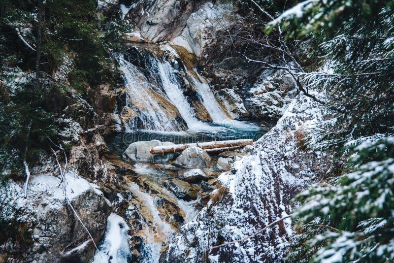 La molla dell'inverno ha alimentato le cascate dell'insenatura nell'inverno immagini stock
