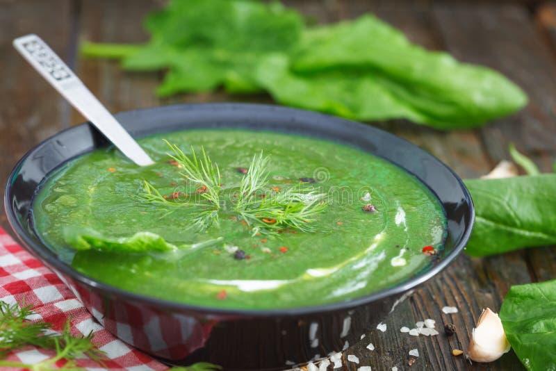 La molla verde ha passato la minestra degli spinaci in una ciotola decorata con aneto immagini stock libere da diritti
