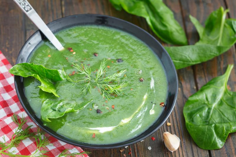 La molla verde ha passato la minestra degli spinaci in una ciotola decorata con aneto immagine stock libera da diritti