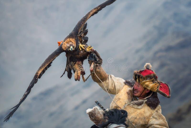 La Mongolia, Eagle Festival dorato Hunter On Horse With un'aquila reale magnifica, spandente le sue ali e tenente la sua preda fotografie stock