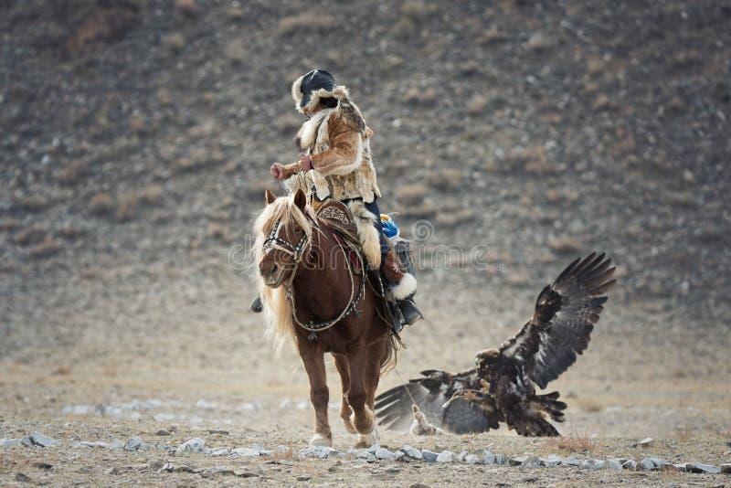 La Mongolia occidentale, cercante con l'aquila reale Giovane ragazza mongola - Hunter On Horseback Participating In Eagle Festiva immagini stock libere da diritti
