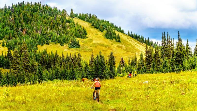 La montaña Biking en Tod Mountain cerca del pueblo de Sun enarbola en la Columbia Británica, Canadá imagen de archivo libre de regalías