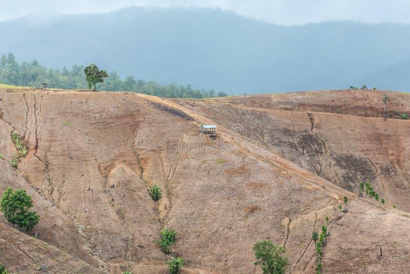 La montagna ha tagliato gli alberi, distrugge la foresta fotografia stock