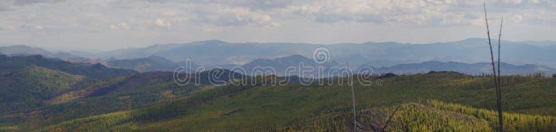 La montagna russa Alberi e montagna immagini stock libere da diritti