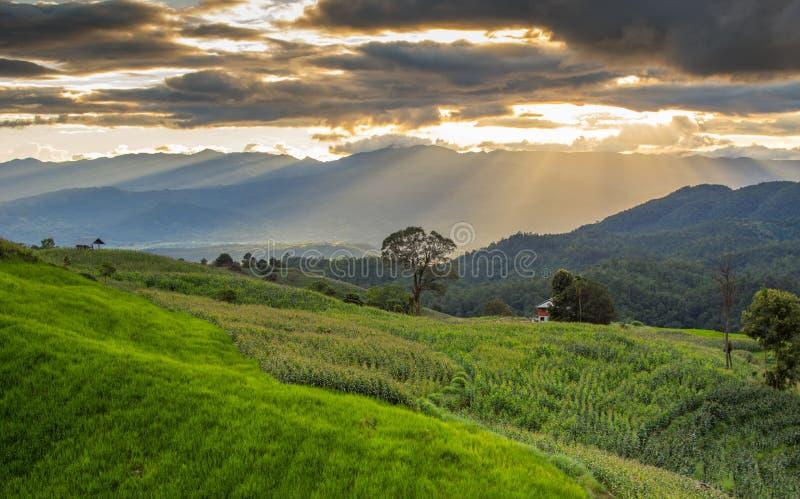 La montagne dans l'AMI de Chaing, Thaïlande images stock