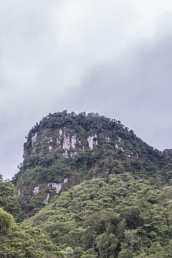 La montagne de Morro à la réservation naturelle de massif de Peñas Blancas, Nicaragua photo stock
