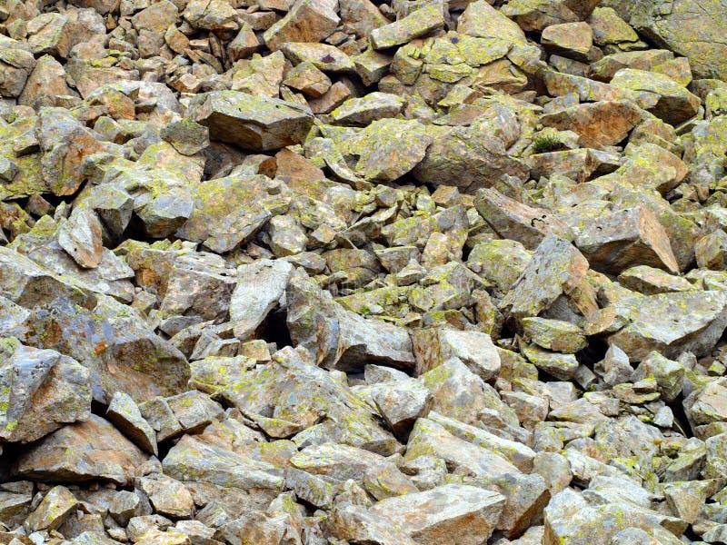 La montagne lapide envahi par de la mousse des dolomites de Brenta comme a images libres de droits