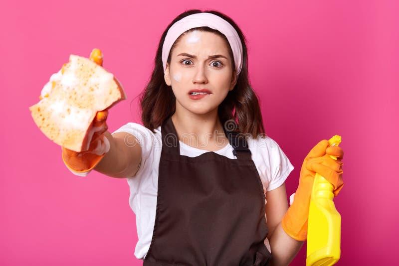 La morenita joven frustrada femenina en delantal marrón y guantes protectores anaranjados, sostiene la esponja y el detergente,  imagenes de archivo
