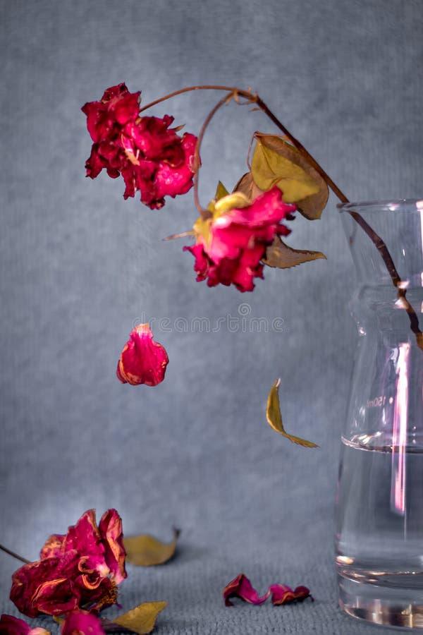 La mort a monté sur un vase images stock