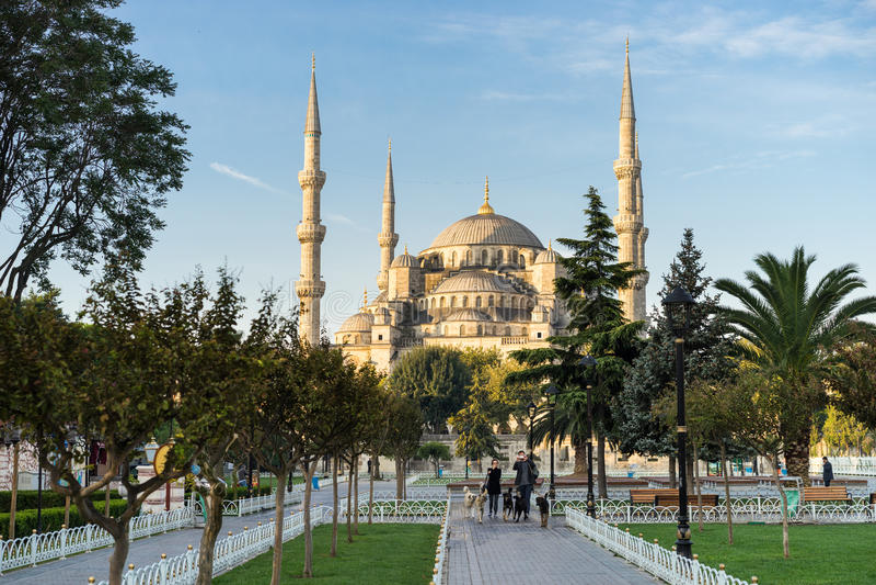 La moschea blu immagini stock libere da diritti