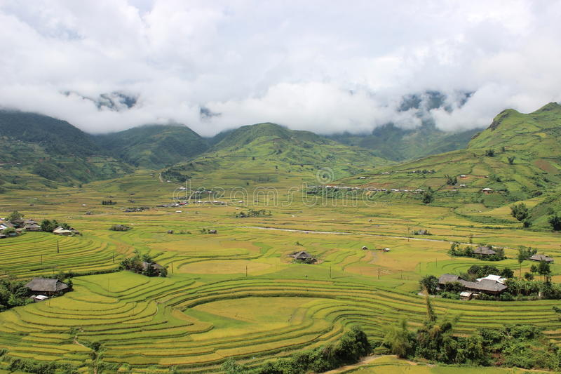 La MU Cang Chai Rice Terrace Fields photo libre de droits