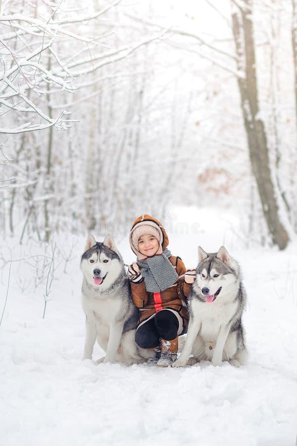 La muchacha alegre con los perros esquimales de los perros imagen de archivo libre de regalías