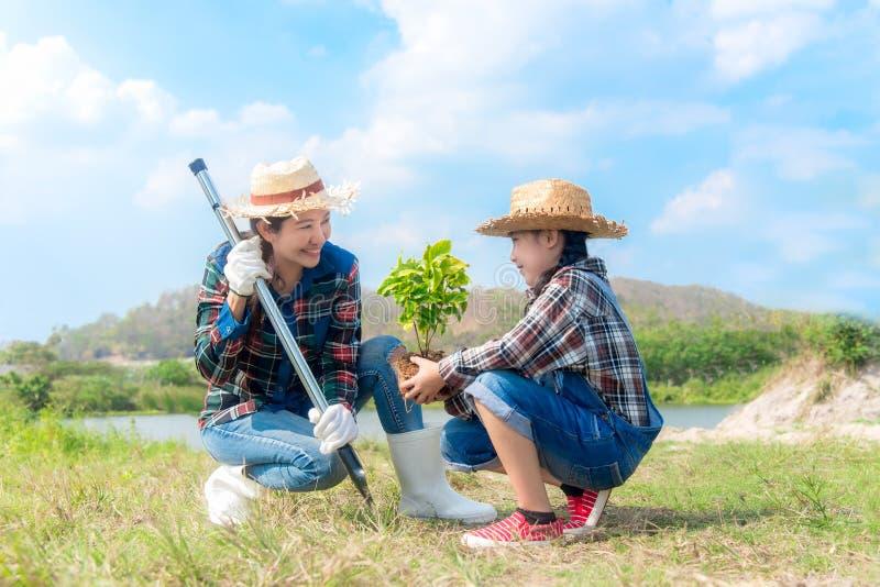 La muchacha asiática de la mamá y del niño planta el árbol joven que el árbol en la primavera de la naturaleza para reduce la car fotografía de archivo