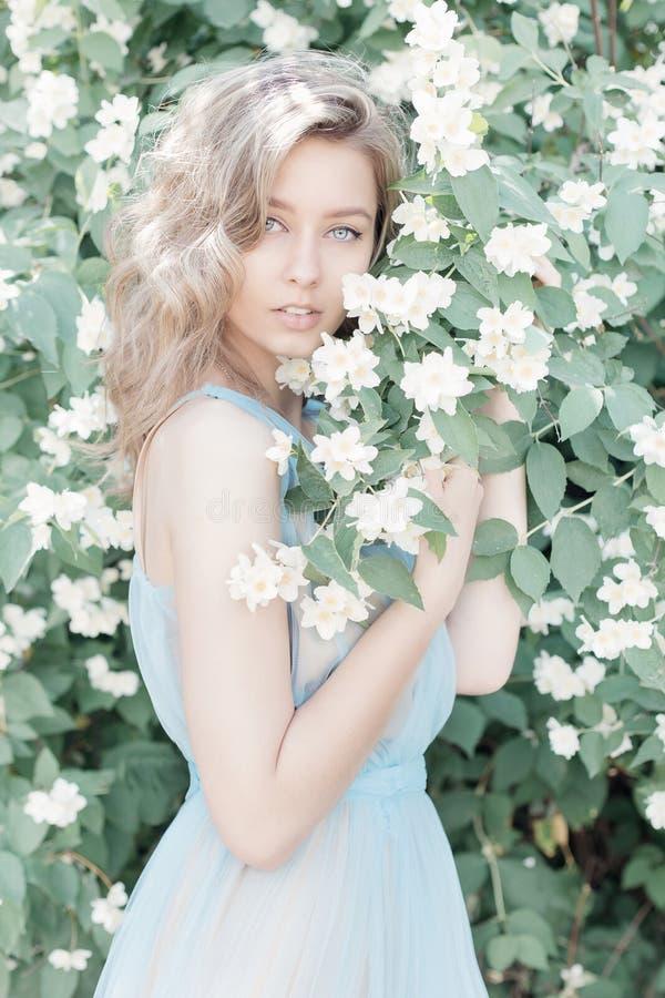 La muchacha blanda dulce hermosa con los ojos azules en un vestido azul con el pelo ligero trenzado en jazmín florece imagen de archivo