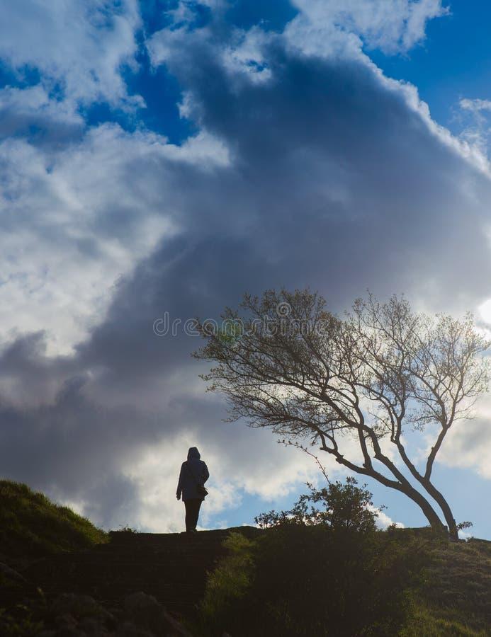 la muchacha camina en tiempo ventoso sobre terreno montañoso fotos de archivo libres de regalías