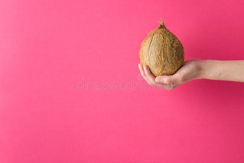 La muchacha caucásica joven de la mujer se sostiene en coco marrón entero estirado de la mano en fondo rosado fucsia de la pared  foto de archivo