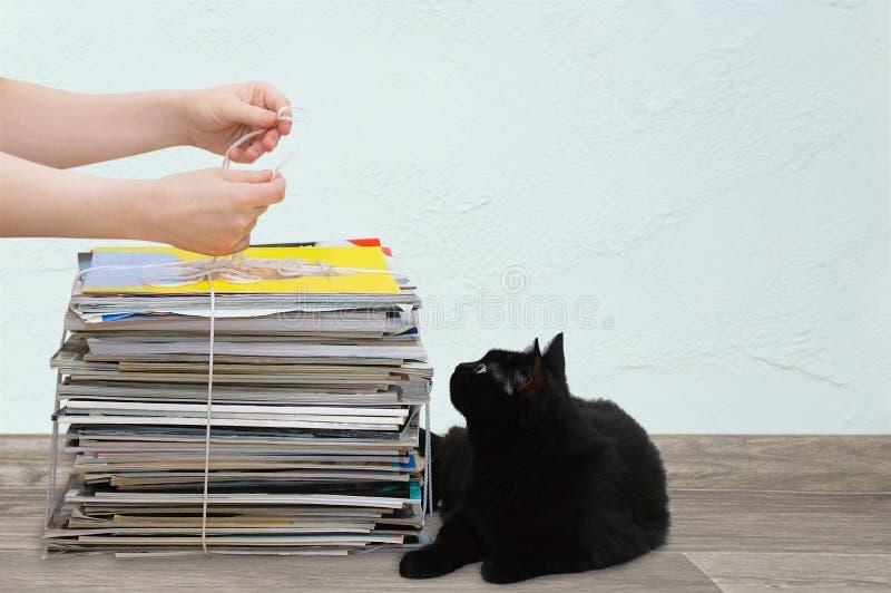 La muchacha caucásica recoge las revistas viejas de papel junto con un gato negro imagenes de archivo
