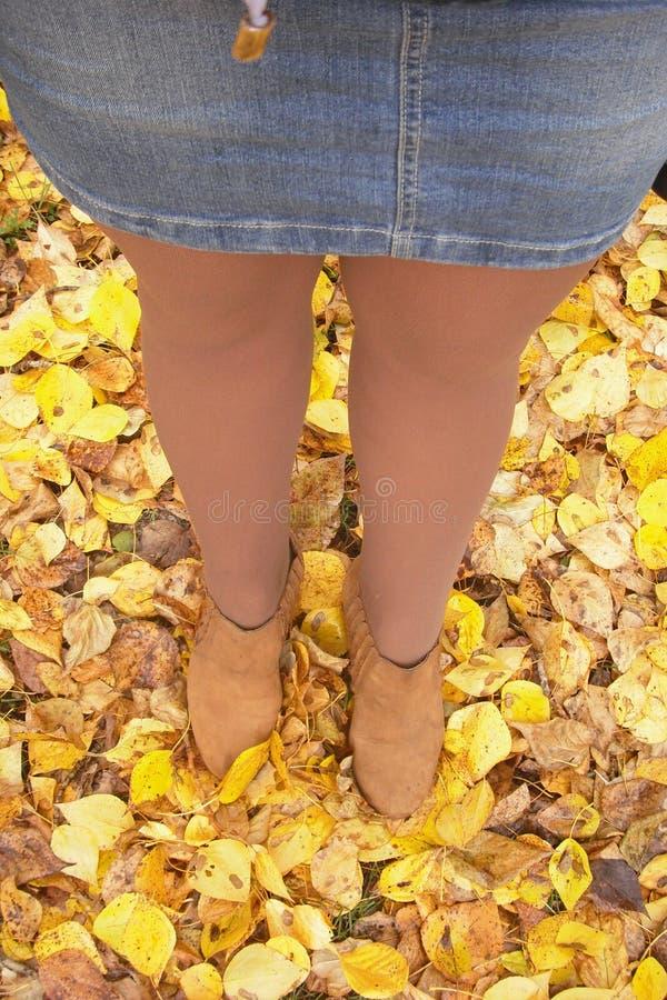 La muchacha cayó el anillo En las hojas de la caída el intentar encontrarlo, pero las hojas de oro ocultó la joya foto de archivo