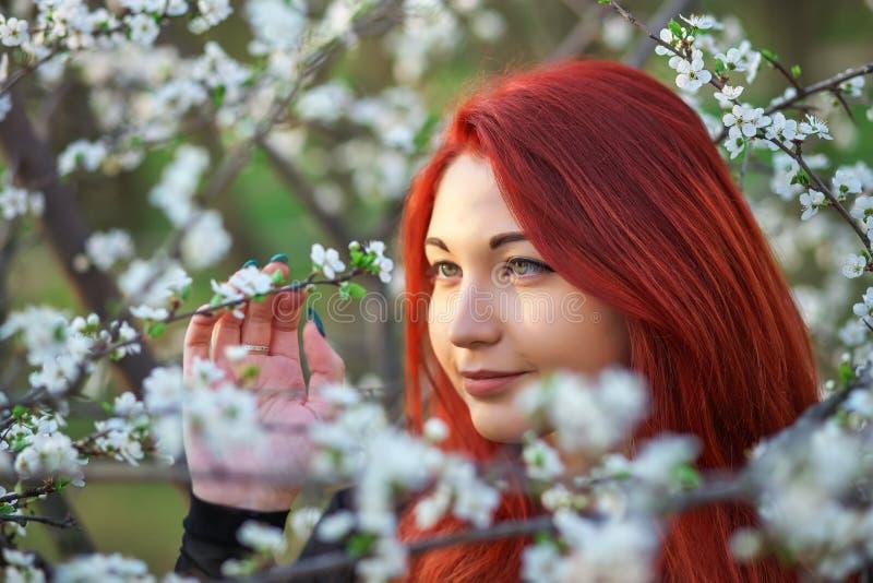 La muchacha con el pelo rojo inhala la fragancia de las flores del ?rbol outdoor fotos de archivo