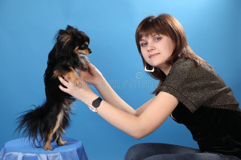 La muchacha con el perrito en un fondo azul foto de archivo libre de regalías