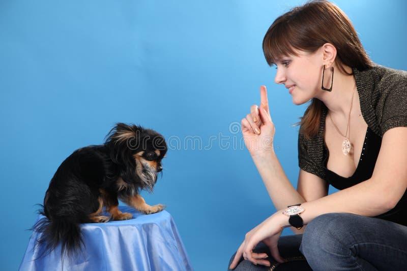 La muchacha con el perrito en un fondo azul fotografía de archivo libre de regalías