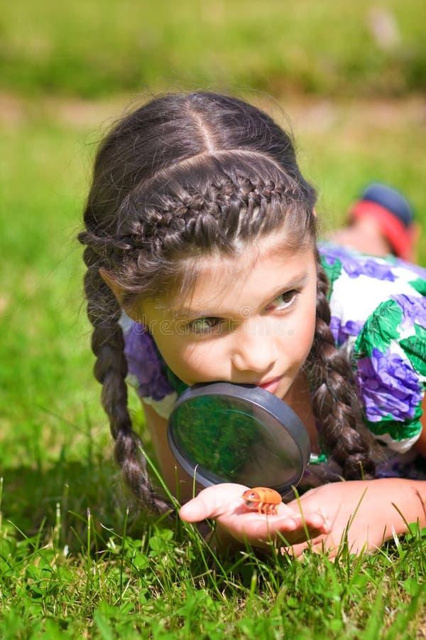La muchacha con la lupa y el escarabajo pone en hierba fotografía de archivo
