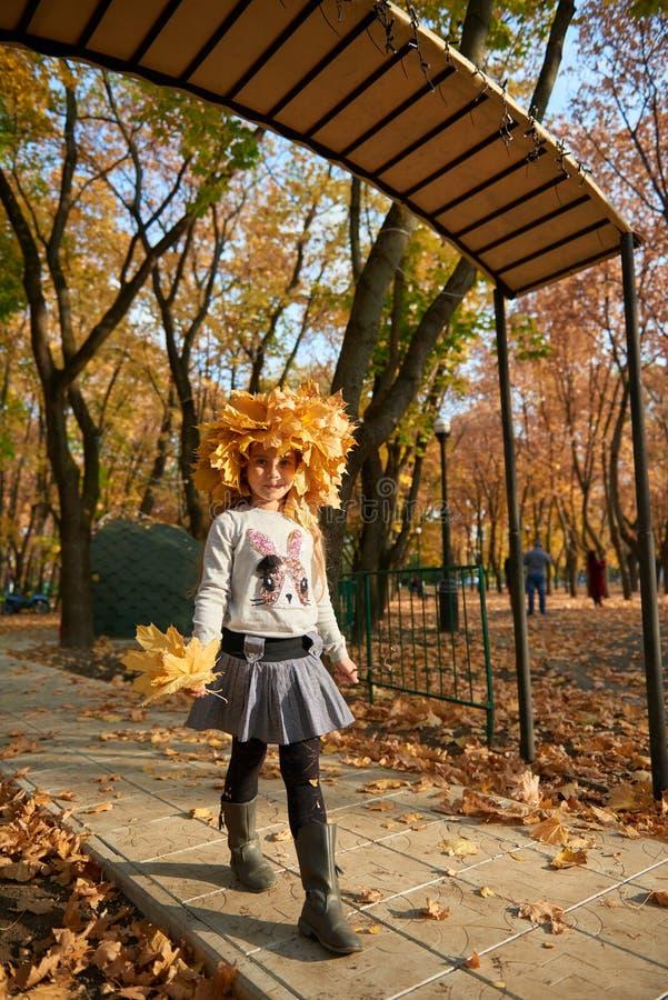La muchacha con las hojas amarillas en su cabeza está en parque de la ciudad del otoño Hojas y árboles amarillos brillantes Día f fotografía de archivo libre de regalías