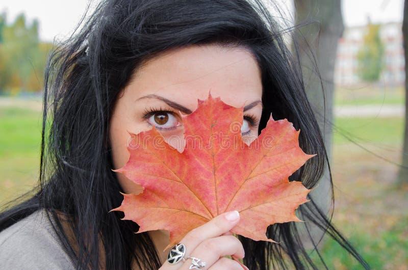 La muchacha cubre la cara con una hoja de arce Hoja de arce del verde del otoño de la tenencia de la muchacha contra la perspecti imagen de archivo libre de regalías
