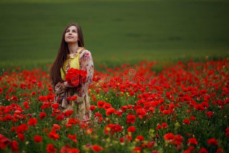 La muchacha de pelo largo sensual, asentada en las amapolas rojas coloca, en un fondo hermoso del paisaje del verano imagen de archivo