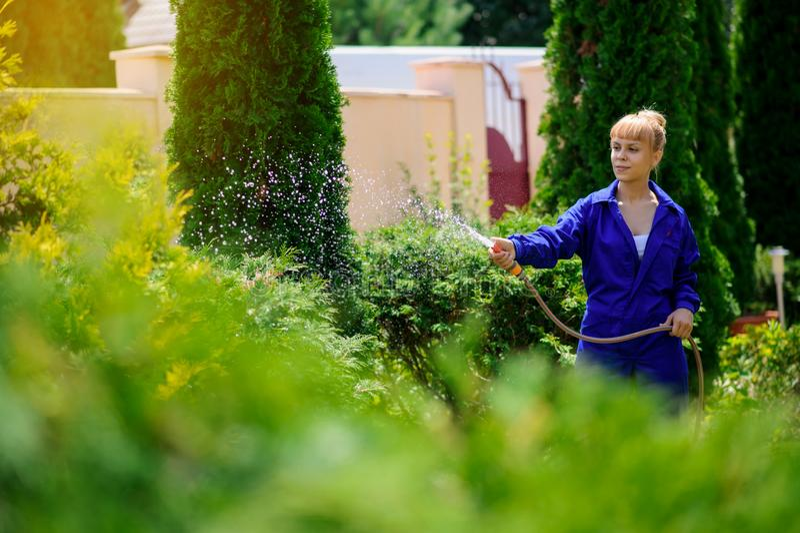La muchacha del jardinero está regando el jardín imágenes de archivo libres de regalías