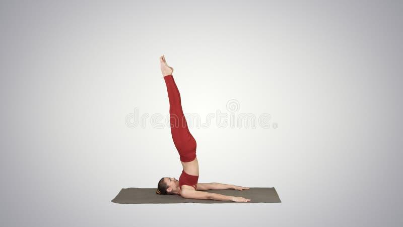 La muchacha deportiva hermosa que hacía los ejercicios de la yoga para la fuerza del ABS, apoyó el asana de Shoulderstand, Salamb ilustración del vector