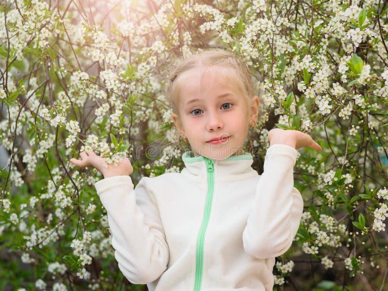 La muchacha en gimnasio viste en un árbol floreciente de la flor de cerezo imágenes de archivo libres de regalías