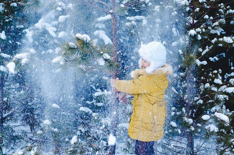 La muchacha en la madera sacude en el invierno un abeto imagen de archivo