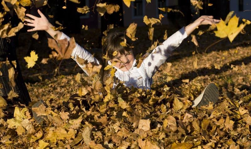 La muchacha en las hojas de otoño imagen de archivo