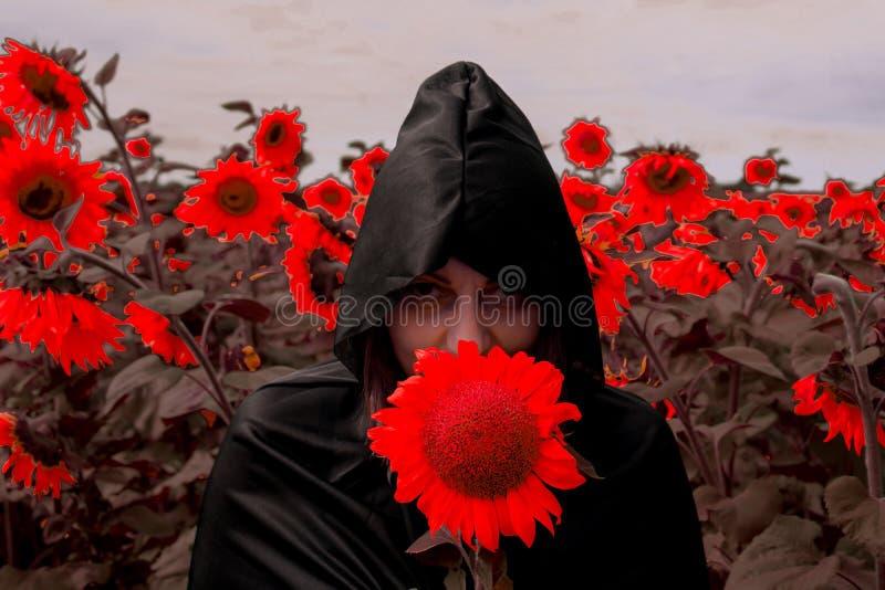 La muchacha en una capa negra de la muerte contra la perspectiva de los girasoles rojos Concepto Halloween fotografía de archivo libre de regalías