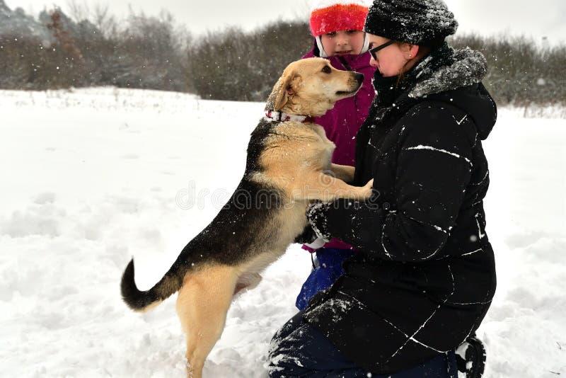 La muchacha está jugando con el perro en la nieve y le da un beso fotos de archivo
